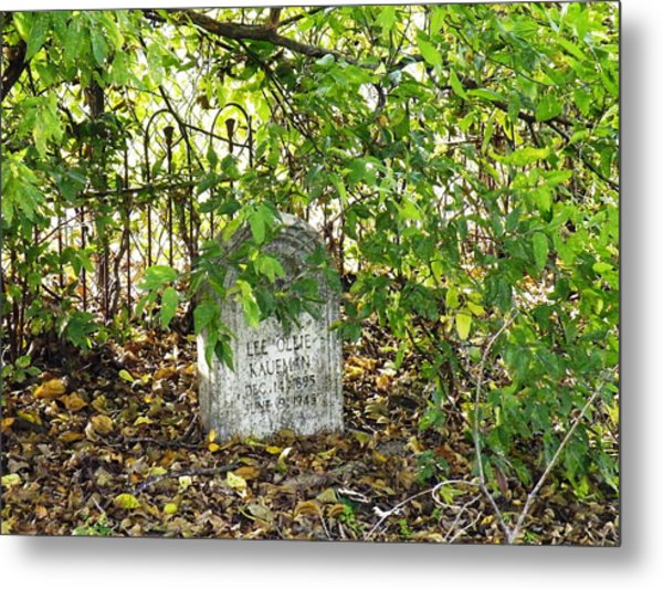 Sheltered Grave Metal Print