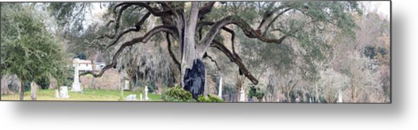 Sheltering The Past Metal Print