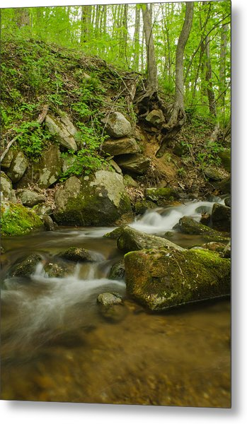 Shenandoah Stream No. 2 Metal Print