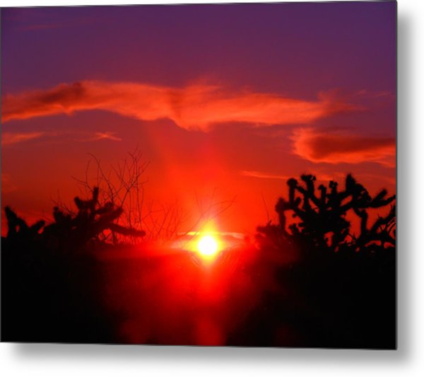 Shineing Star  Metal Print