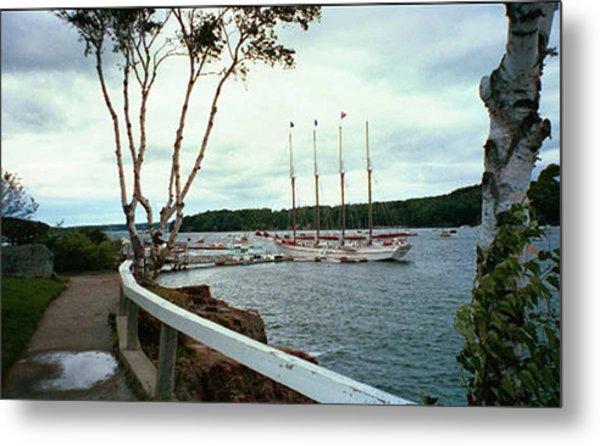 Shore Path In Bar Harbor Maine Metal Print