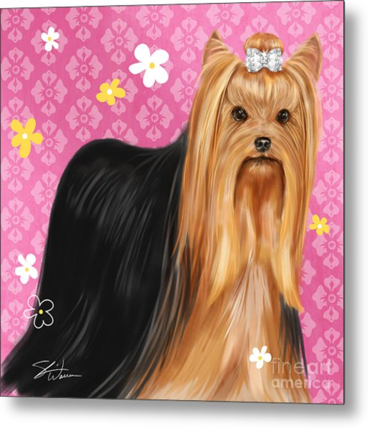Show Dog Yorkshire Terrier Metal Print