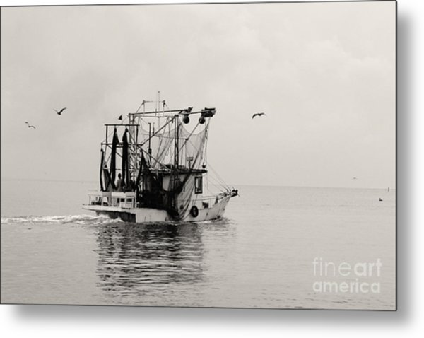 Show Down Metal Print by Russell Christie