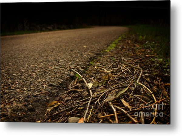 Side Of The Road Metal Print by Jolanta Meskauskiene