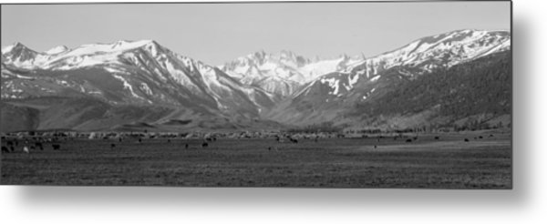 Sierra Mountains, California Metal Print