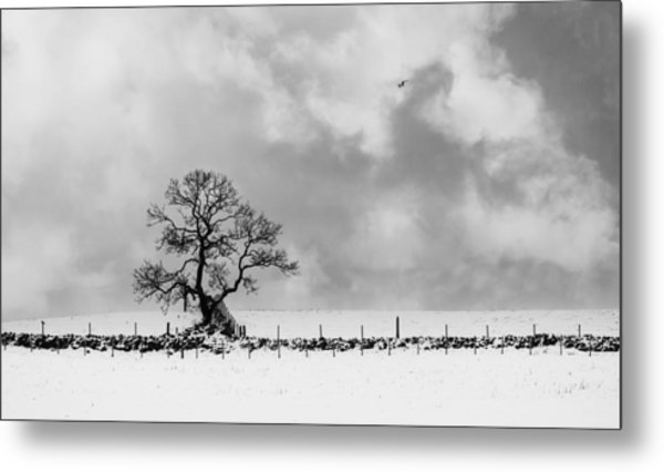 Sign Of Winters End Metal Print