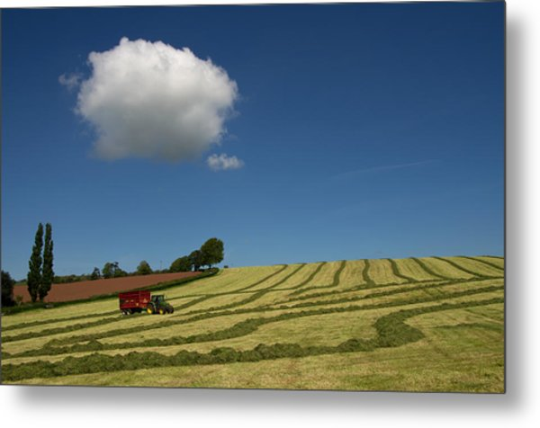 Silage Collection Metal Print