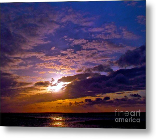 Silent Stride Of Earth Metal Print by Q's House of Art ArtandFinePhotography