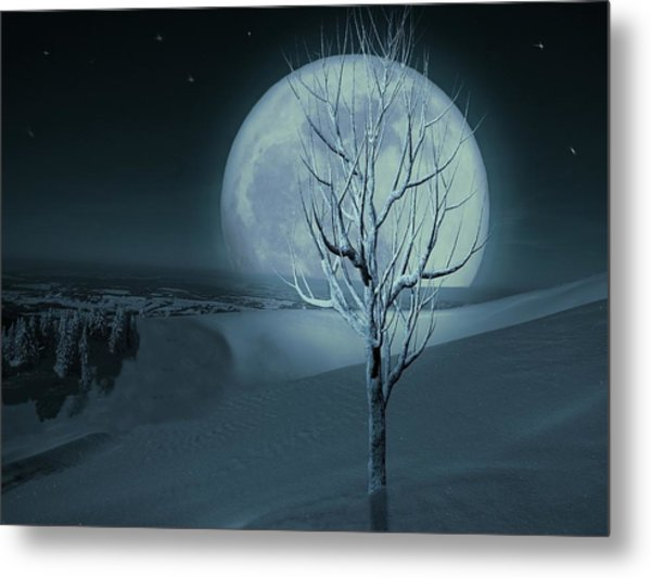 Silent Winter Evening  Metal Print