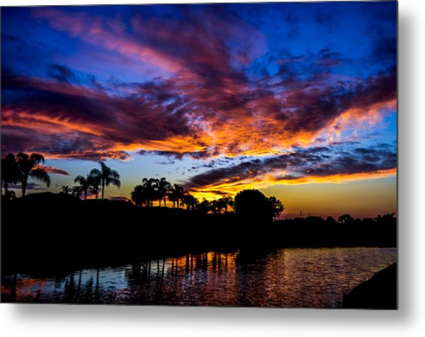 Silhouette Of Color Metal Print