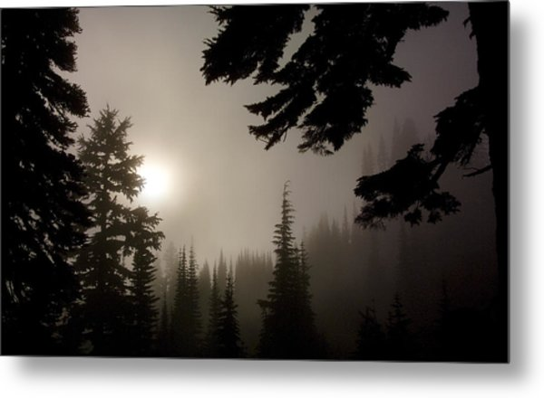 Silhouettes Of Trees On Mt Rainier Metal Print