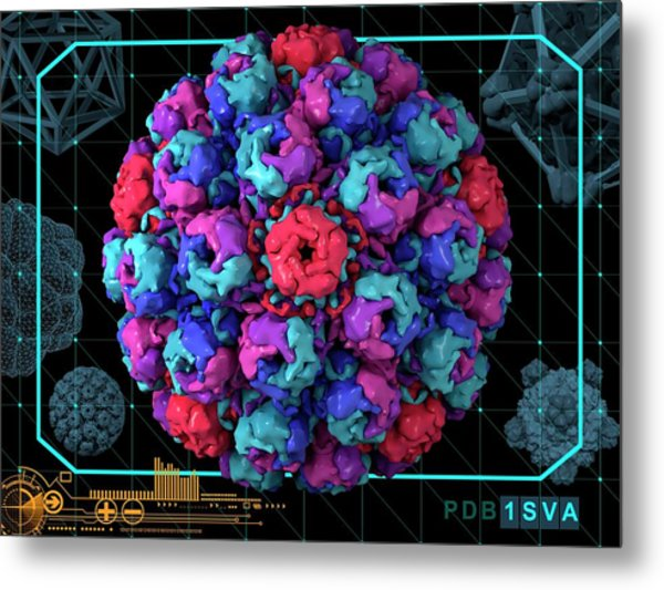 Simian Virus 40 Metal Print by Laguna Design/science Photo Library