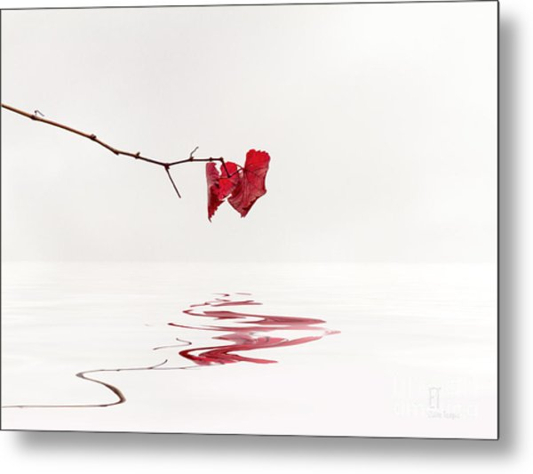 Simply Leaves Metal Print
