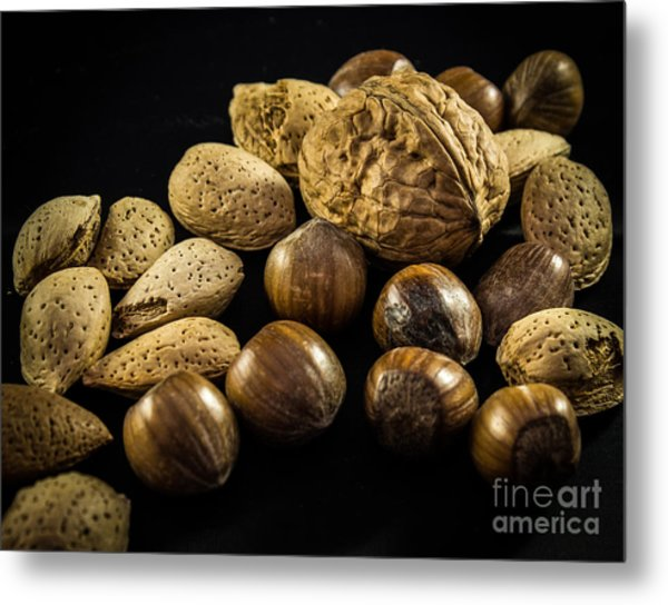 Simply Nuts Metal Print