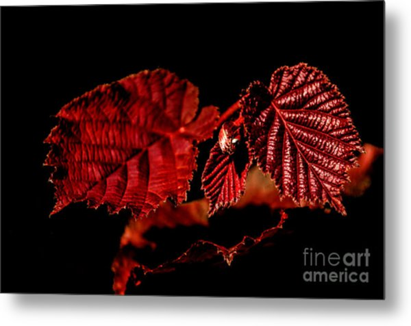 Simply Red Metal Print