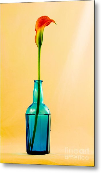 Single Calla In Blue Bottle Metal Print