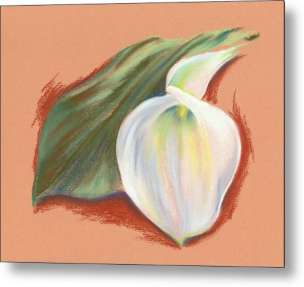 Single Calla Lily And Leaf Metal Print