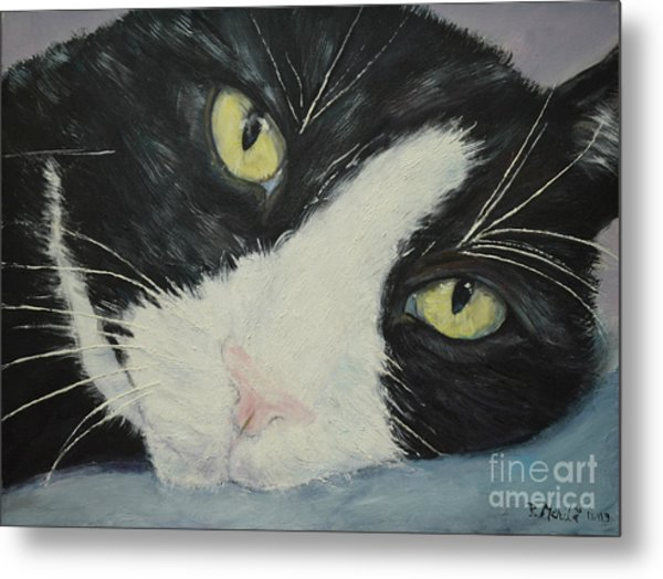 Sissi The Cat 1 Metal Print