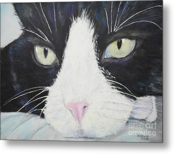 Sissi The Cat 2 Metal Print