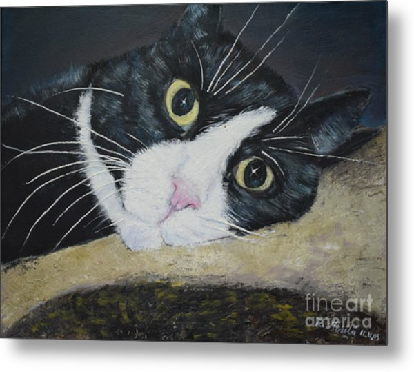 Sissi The Cat 3 Metal Print