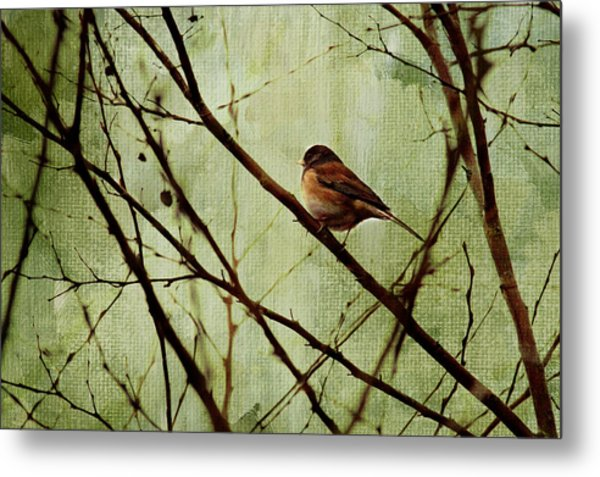 Sittin' In A Tree Metal Print