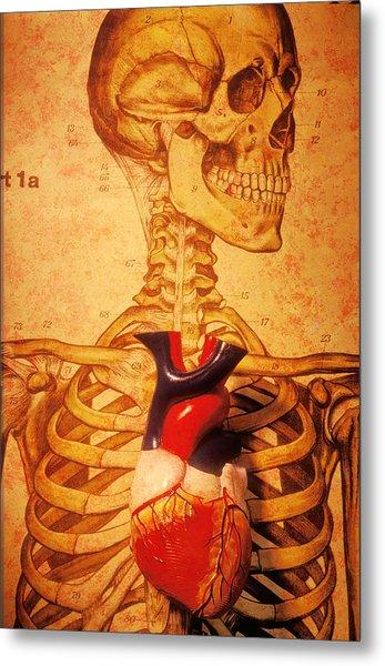 Skeleton And Heart Model Metal Print