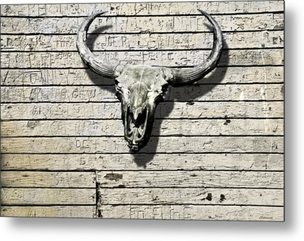 Skull And Horns Metal Print by Larry Butterworth