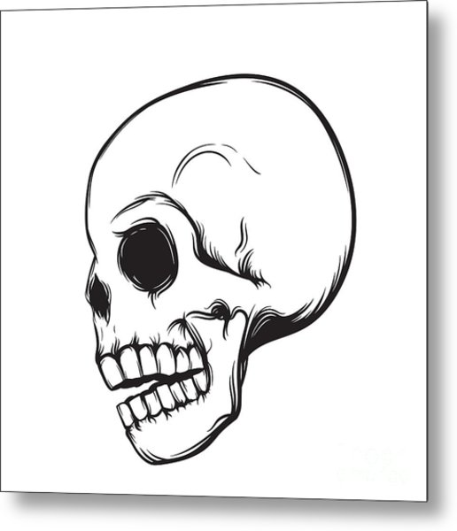 Skull, Side View, Isolated On White Metal Print