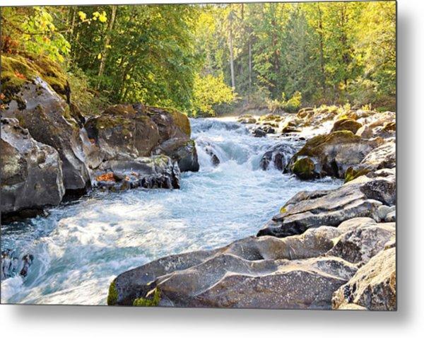 Skutz Falls At Cowichan River Provincial Park Metal Print
