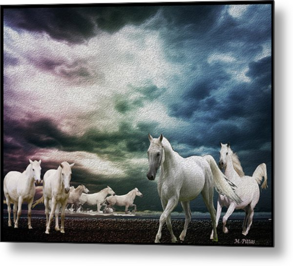 Sky Horses Metal Print