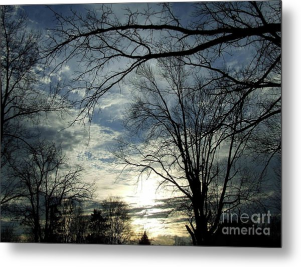 Skyreview Metal Print