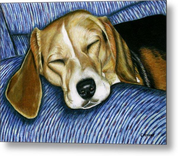 Sleeping Beagle Metal Print
