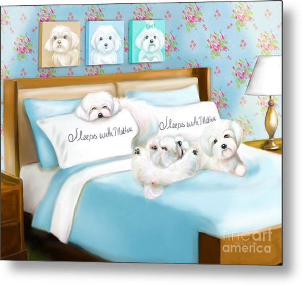 Sleeps With Maltese Metal Print