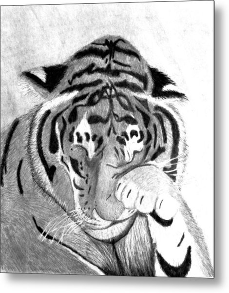 Sleepy Tiger Metal Print