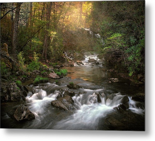 Slice Of Heaven Metal Print by William Schmid