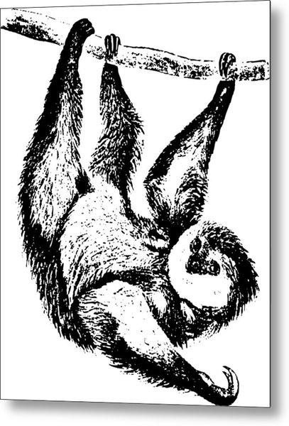 Sloth Drawing Metal Print by