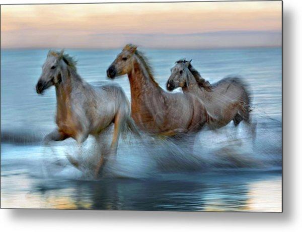 Slow Motion Horses Metal Print by Xavier Ortega