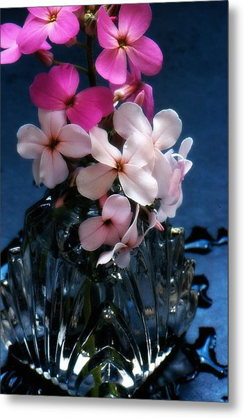 Small Flowers Metal Print
