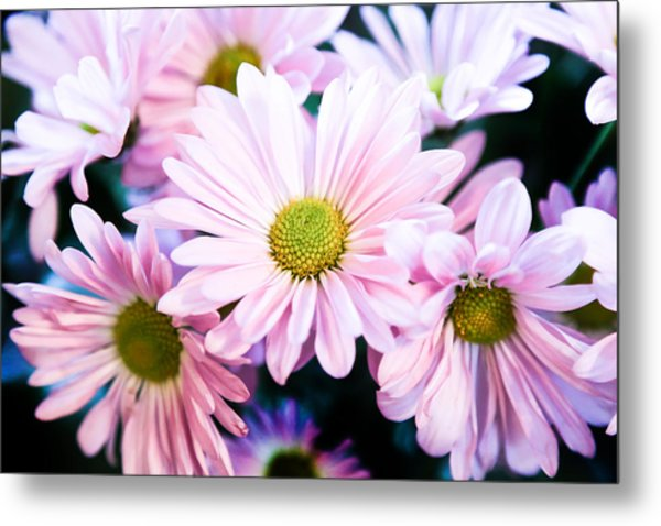 Smiling At You Metal Print