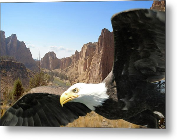 Smith Rocks Eagle Metal Print