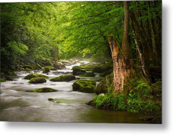 Smoky Mountains Solitude - Great Smoky Mountains National Park Metal Print