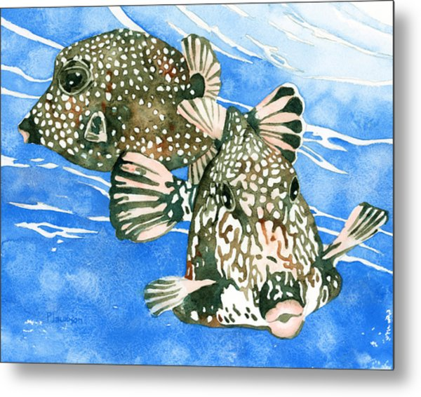 Smooth Trunkfish Pair Metal Print