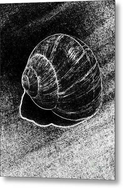 Snail Shell Black And White Art No.11 Metal Print by Drinka Mercep