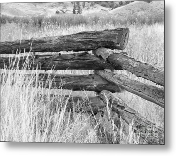 Metal Print featuring the photograph Snake Fence  by Ann E Robson