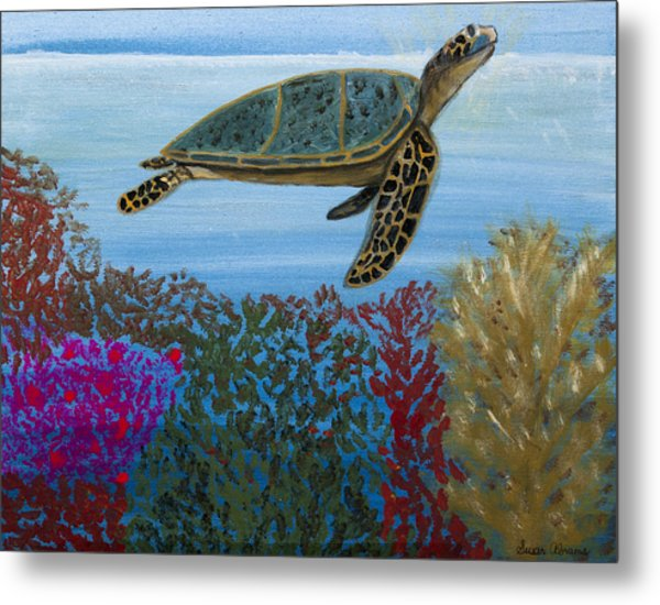Snorkeling Maui Turtle Metal Print