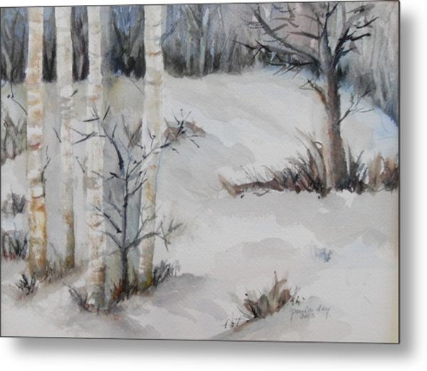 Snow Birches Metal Print