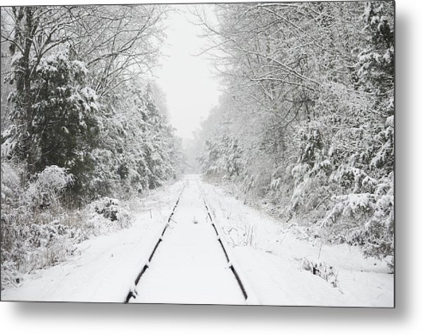 Snow Bound Metal Print by Nancy Edwards