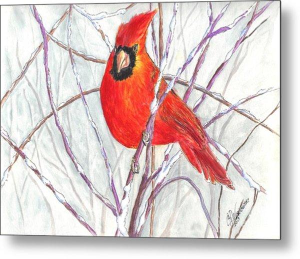 Snow Cardinal Metal Print