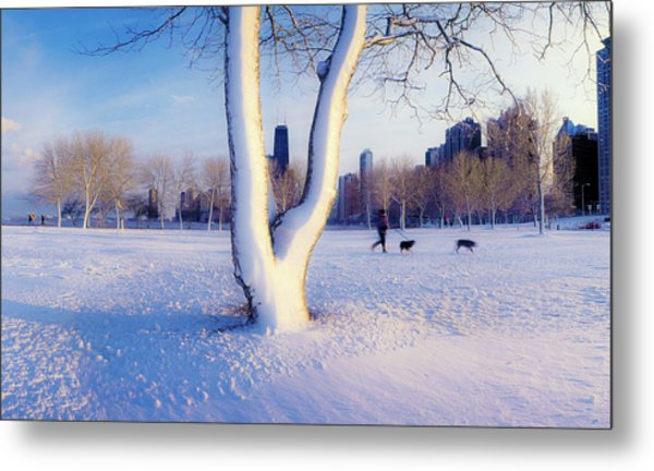 Snow Covered Lakefront Park In Winter Metal Print