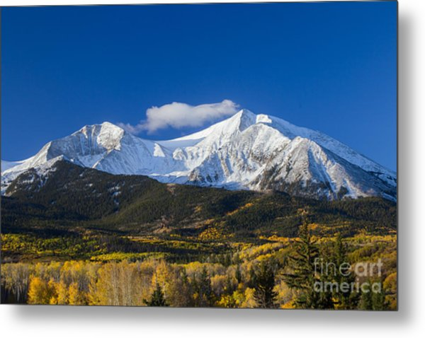 Snow Covered Mount Sopris With Golden Aspen Trees Metal Print